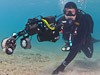 For sale Oceanic strobe arms + Buoyancy Floats + T mount base - last post by pKai