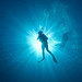 Is this a squat lobster?? - last post by Cerianthus