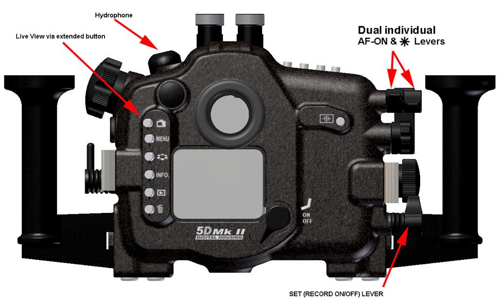 5D_Mk_II_rear_view.jpg