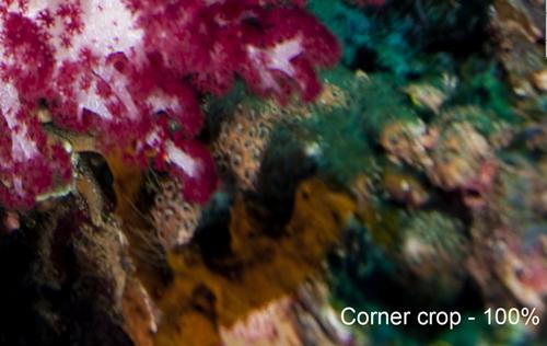 corner_crop.jpg