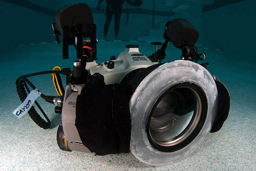 2009_1_Grand_Cayman_454.jpg