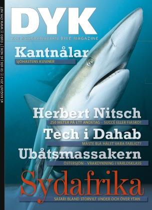 DYK - Cover.jpg