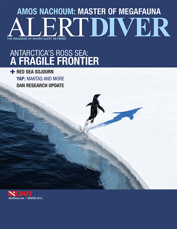 Cover1b_Winter2013_r2.jpg