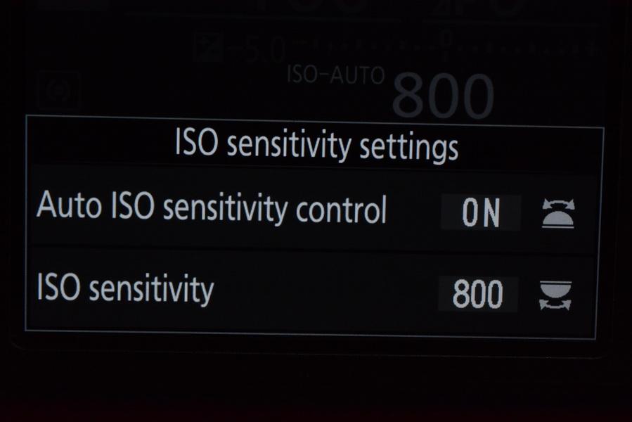 ISO sensi setts.JPG