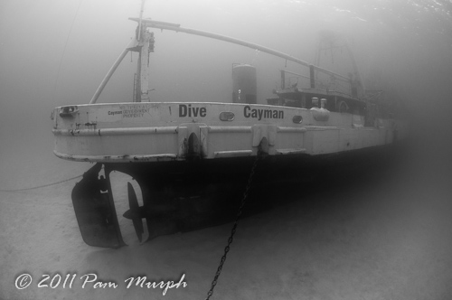 Cayman_2011_web__1_of_1__3.jpg