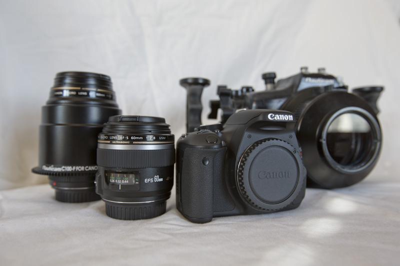 04_NA600D_CameraLenses800.jpg