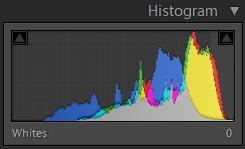 histogram as shot (lightroom).jpg