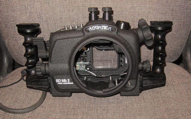Aquatica 004.jpg
