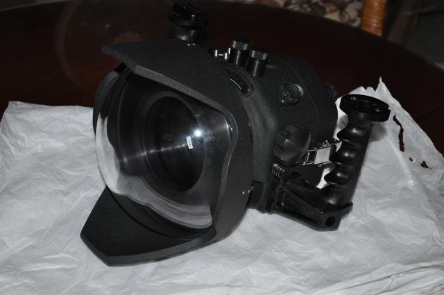 Nikon AD.().JPG