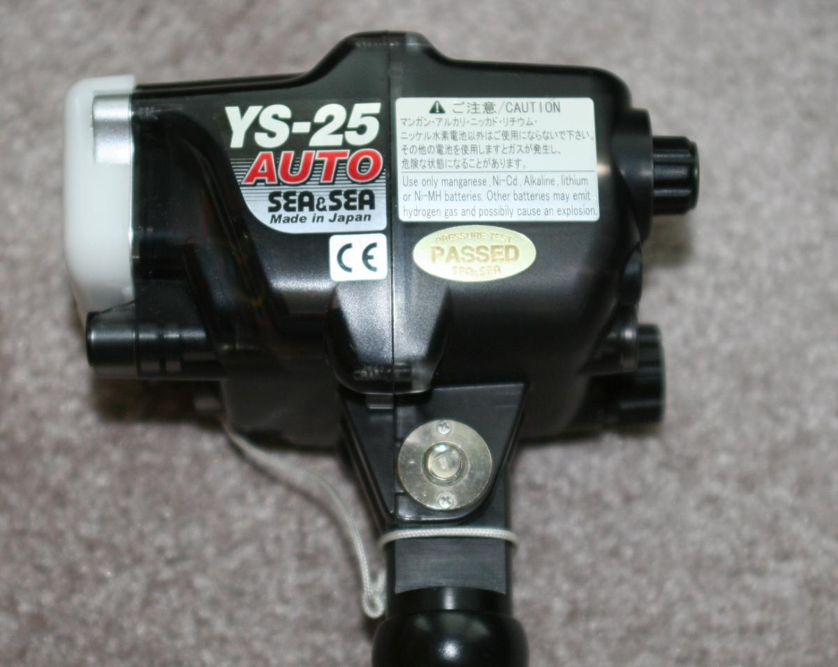 YS25.jpg