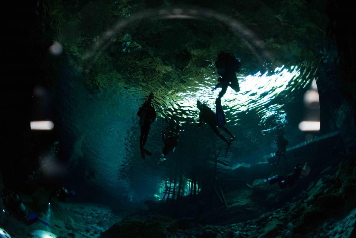cenote2-0938.jpg