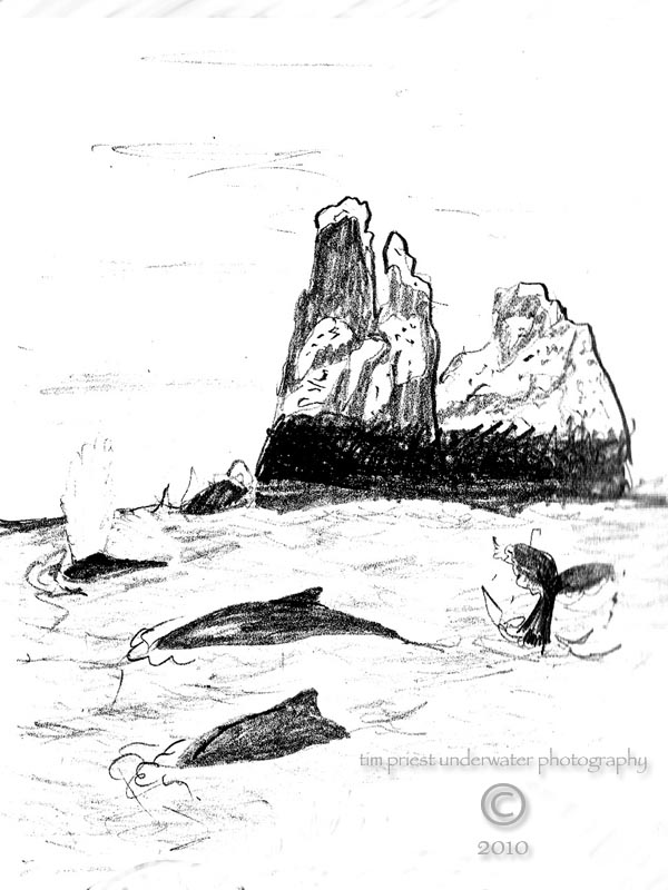 Baja_California_2010_d_humpback_whales_Roca_Partida.jpg