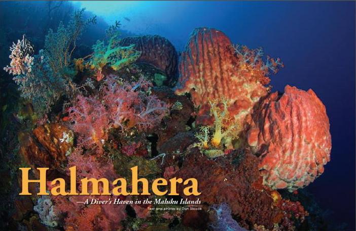 Halmahera_X_Ray.jpg