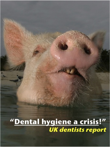 Dental_Hygiene.jpg