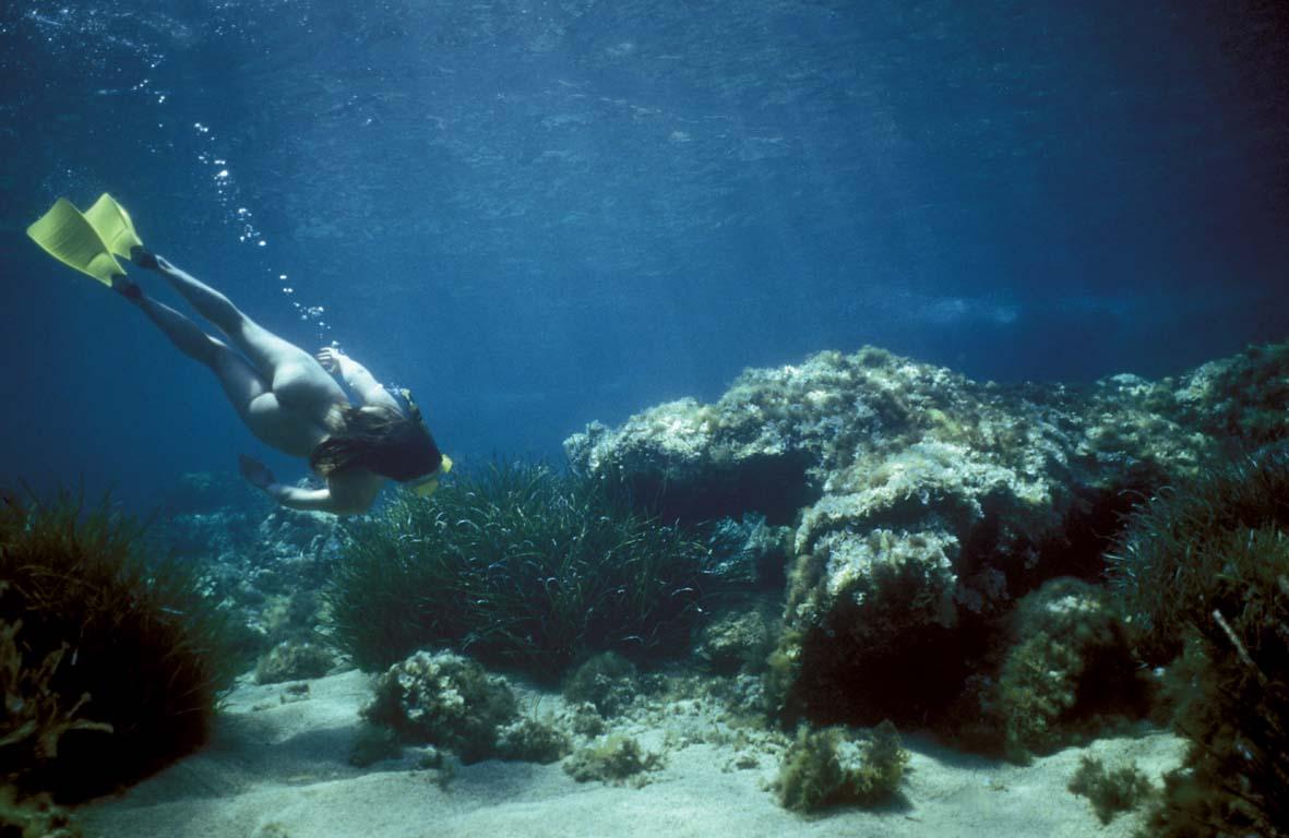 Snorkelling2.jpg