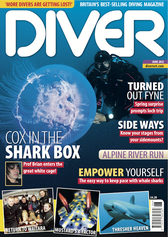 diver_cover.jpg