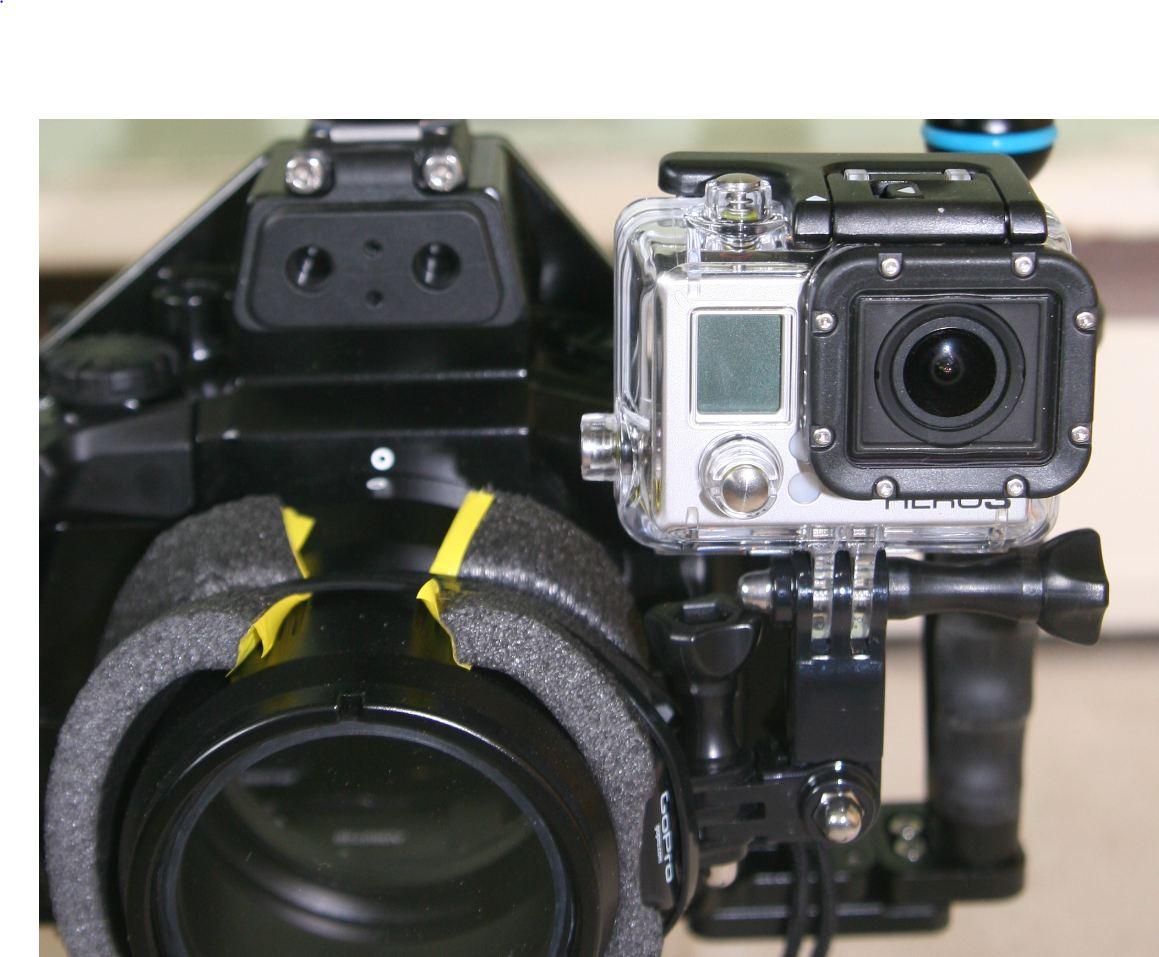 GoPro2.JPG