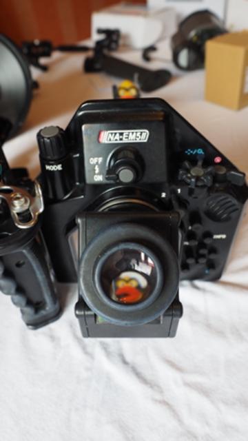 P4300020.jpg
