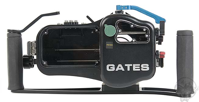 Gates_HFS21.005.jpg