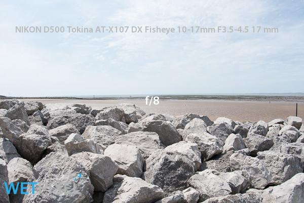 170619-ahanlon-508347.jpg