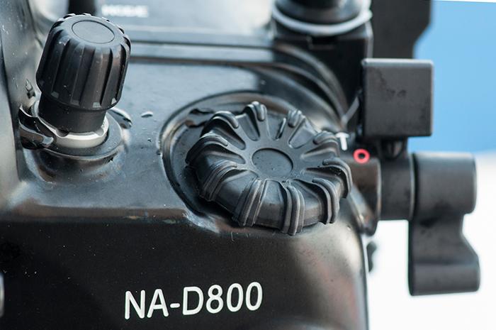 RS12_am-13004.jpg
