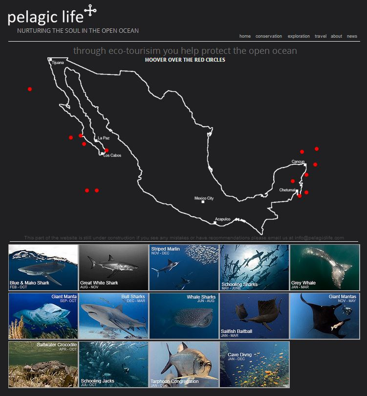Pelagic Life Travel.JPG