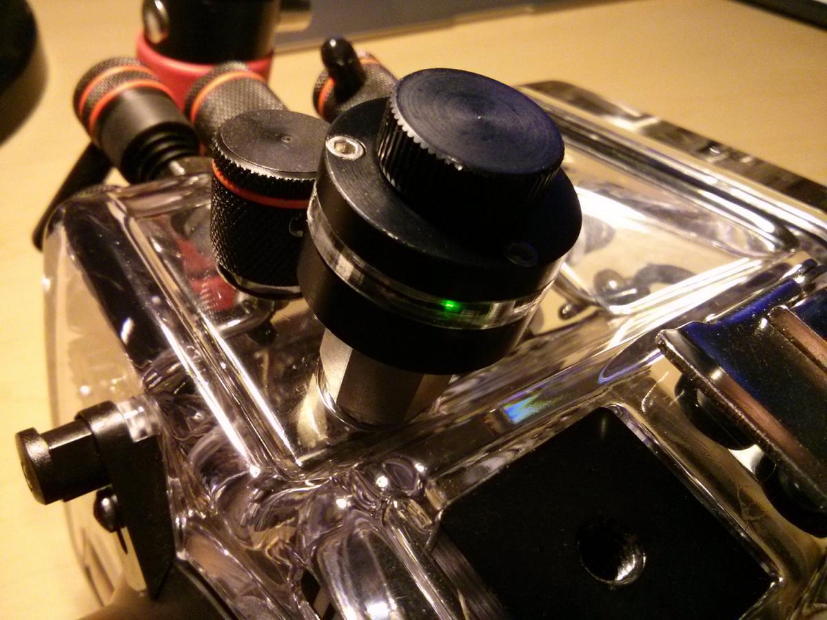 leak-sentinel-ikelite-d800.jpg