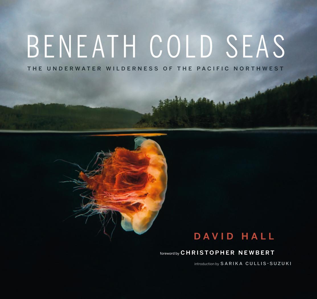 BeneathColdSeas - Cover (U.S. & Canada).jpg