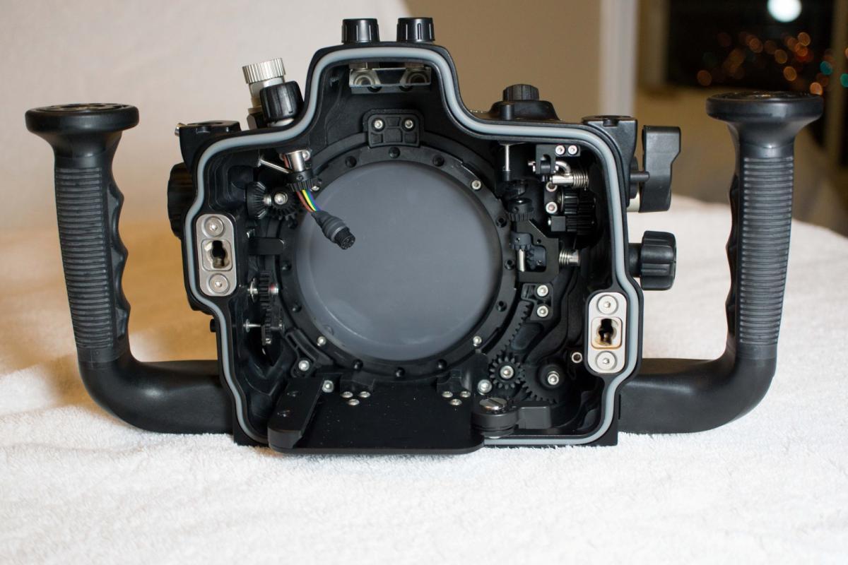 DSC00689 (Large).jpg