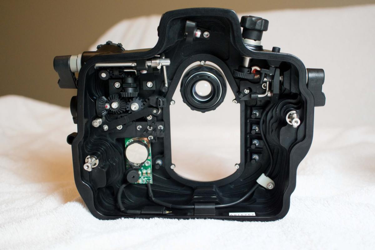 DSC00691 (Large).jpg