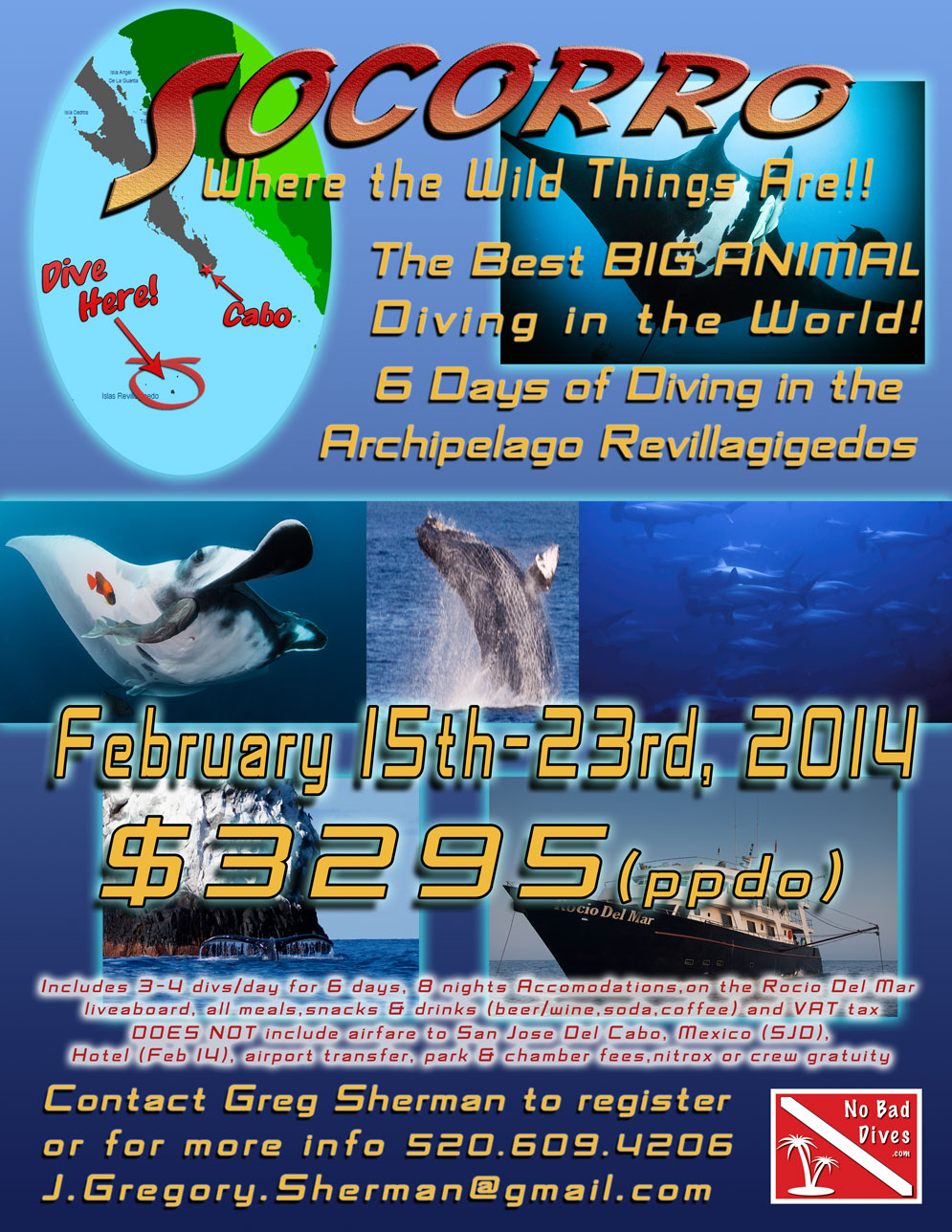socorro-2014-flyer-web.jpg