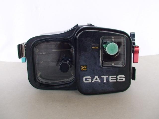 gates housing 1.jpg