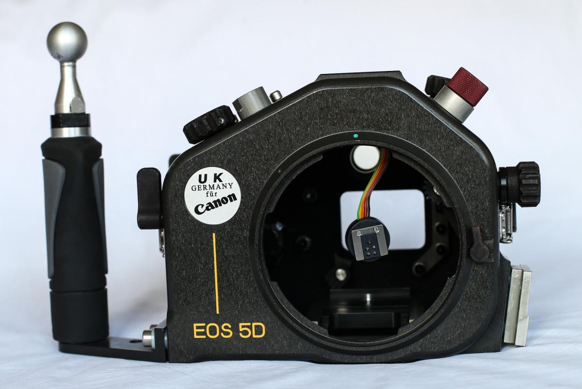 CU7P8577.jpg