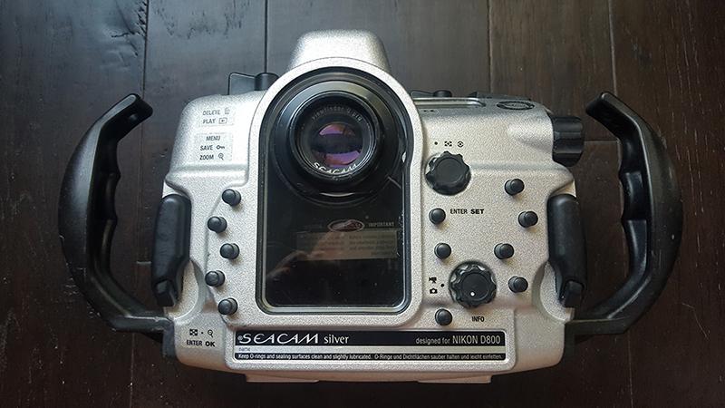 backd800.jpg