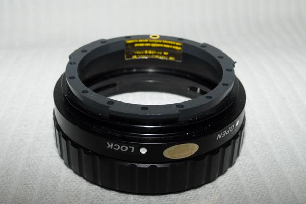 _MG90385 - fps.jpg