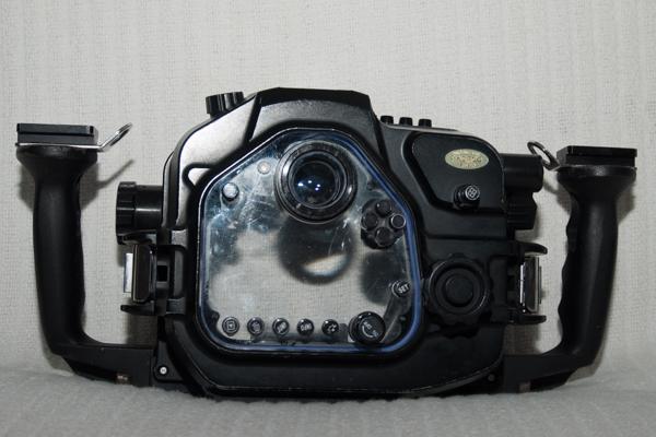 _MG90394 - fps.jpg