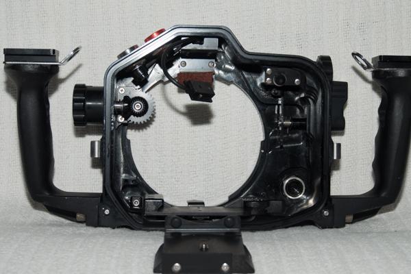 _MG90398 - fps.jpg