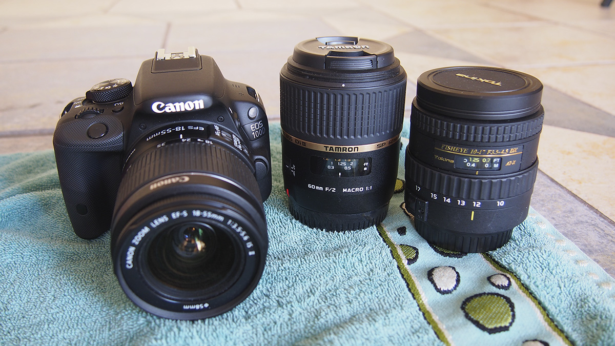 Canon EOS 100D / Rebel SL1 with Ikelite Housing and goodies - Full ...