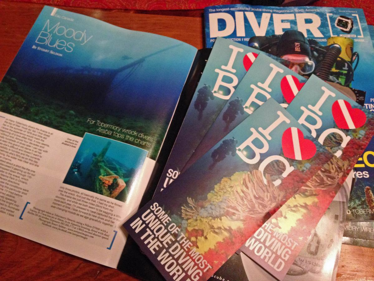 Diver Mag and Brochure small.jpg