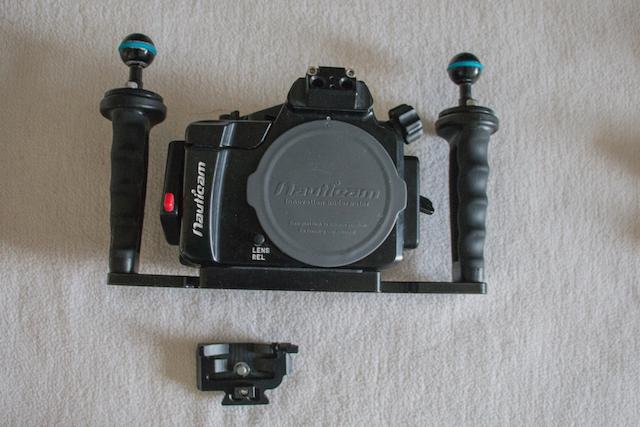 Sony camera-Nauticam housing-5.jpg