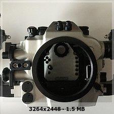 585C0802-2F11-403E-B018-499AE423BA2E.jpeg