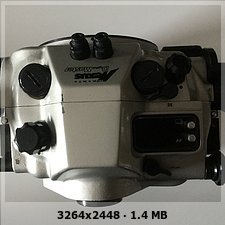 E8211035-9039-4DCA-A025-781937DAC54B.jpeg