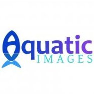Aquatic Images
