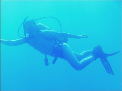 Tz_diving_FL_avatar_400px.jpg