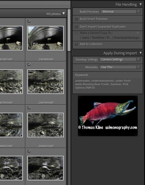 Screen Shot 2021-09-05 at 8.56.09 PM.jpg