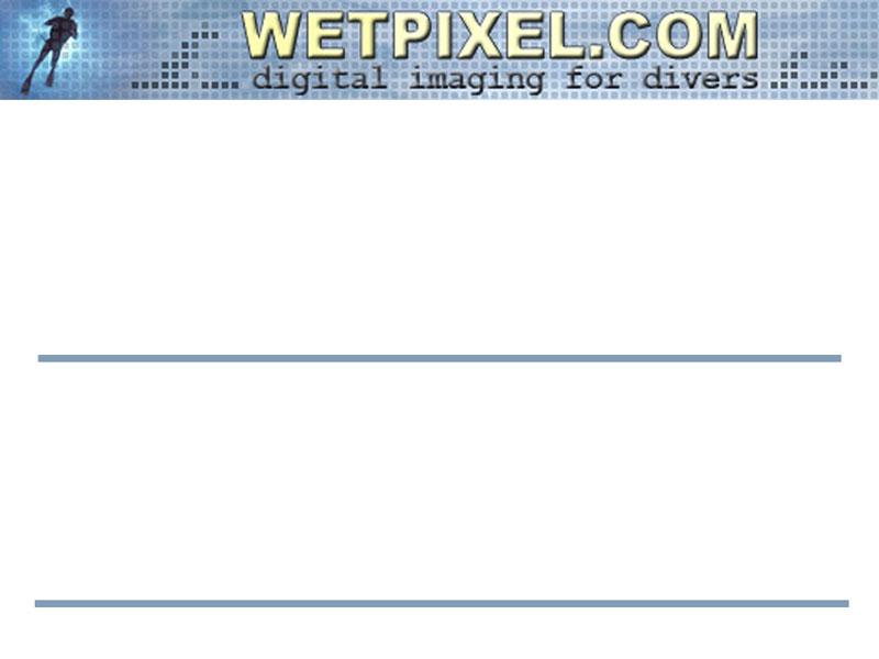 Name_tag_3x4.jpg