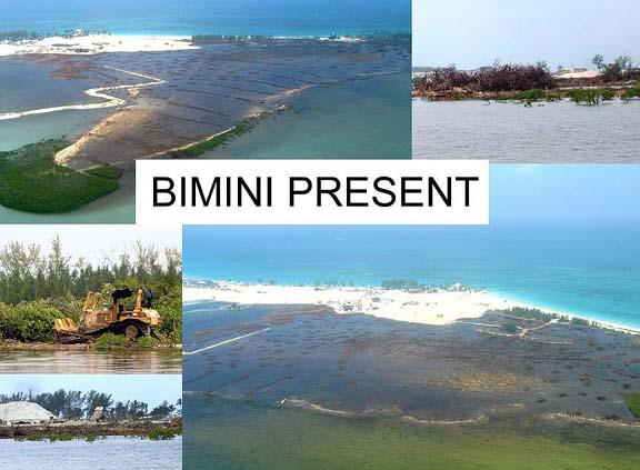 Bimini_present_72dpi_a.jpg