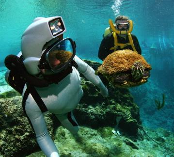 CousteauGearAndTurtle.jpg
