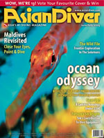 asian_diver_cover.jpg
