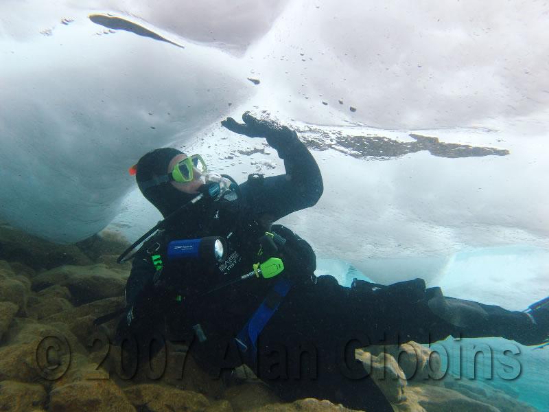 Diving_2_copyright.jpg